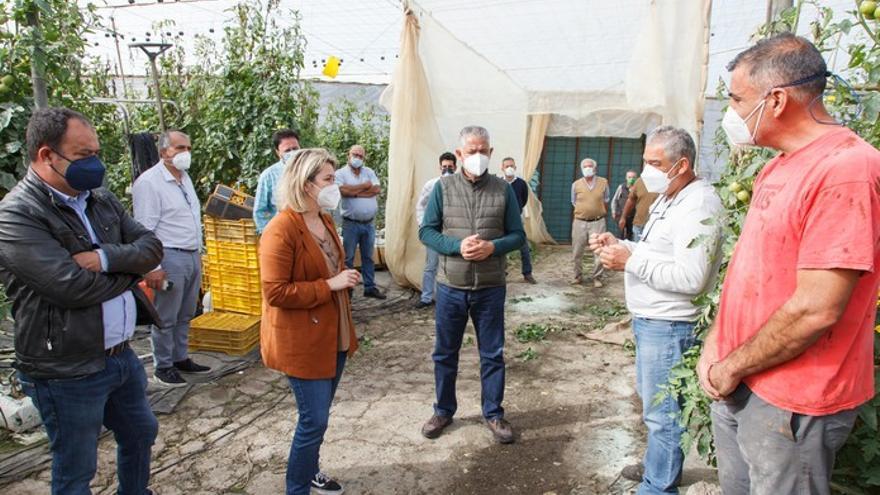 Alicia Vanoostende visita los tomateros de La Aldea