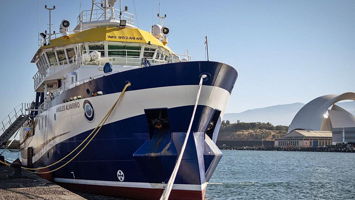 Imagen del buque el día de su atraque en el puerto santacrucero.  | | ANDRÉS GUTIÉRREZ