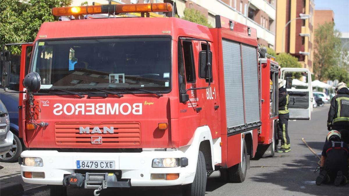 Apagado el incendio de la carretera de Palma del Río por bomberos y personal del Infoca