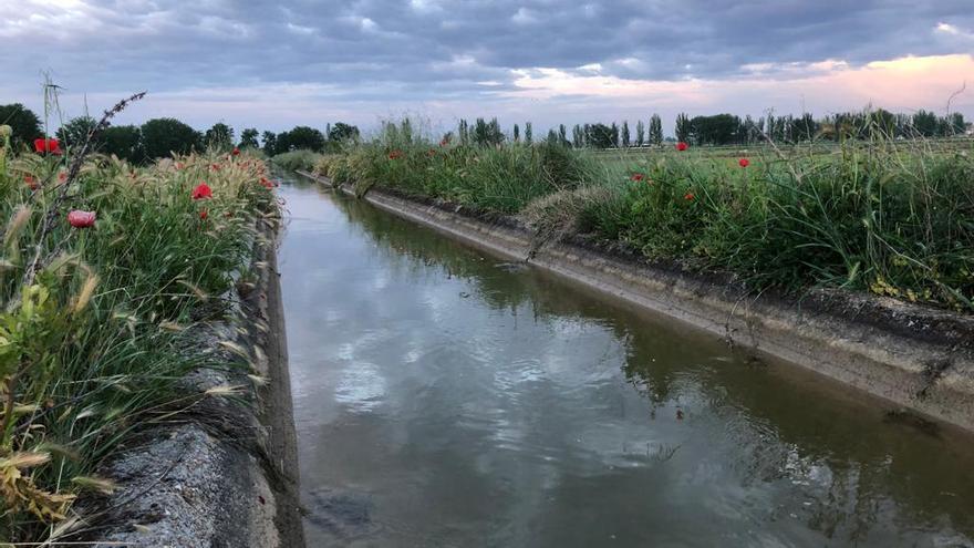 Sale a información pública la modernización de un sector del canal de San José de Zamora