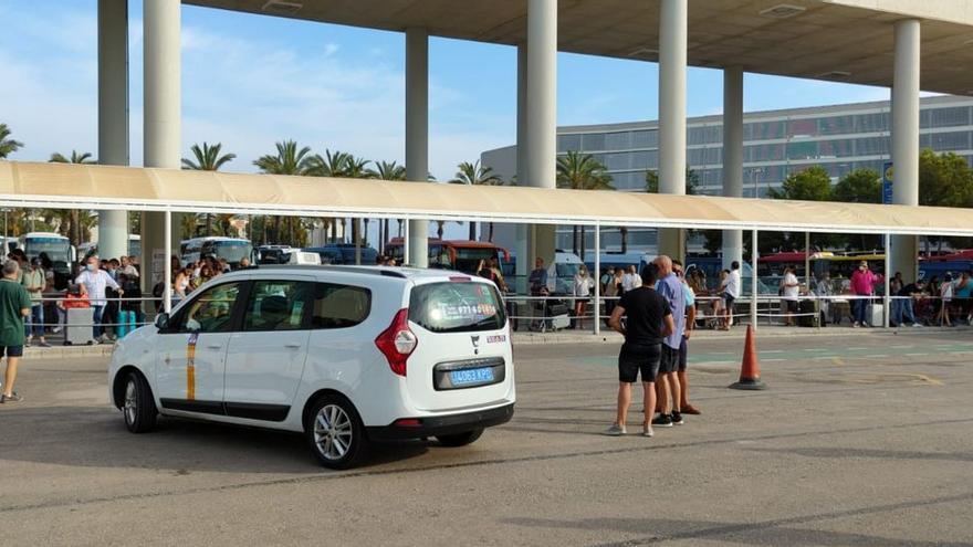 Ärger um illegale Konkurrenz: Taxi-Streik am Flughafen von Mallorca