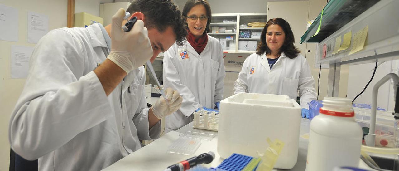 La UMH lanza un plan de incentivos a los investigadores para que sus trabajos sean útiles a las empresas
