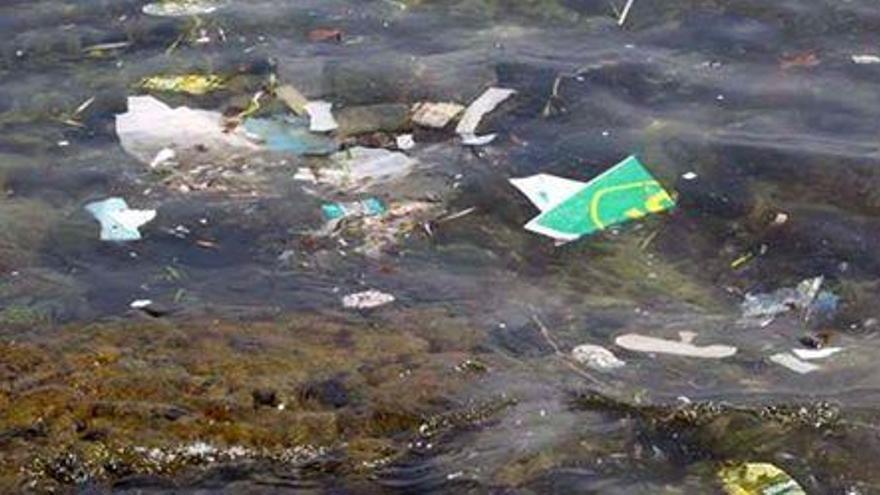 Forscher registrieren hohe Konzentration von Plastikmüll an der Nordküste von Mallorca