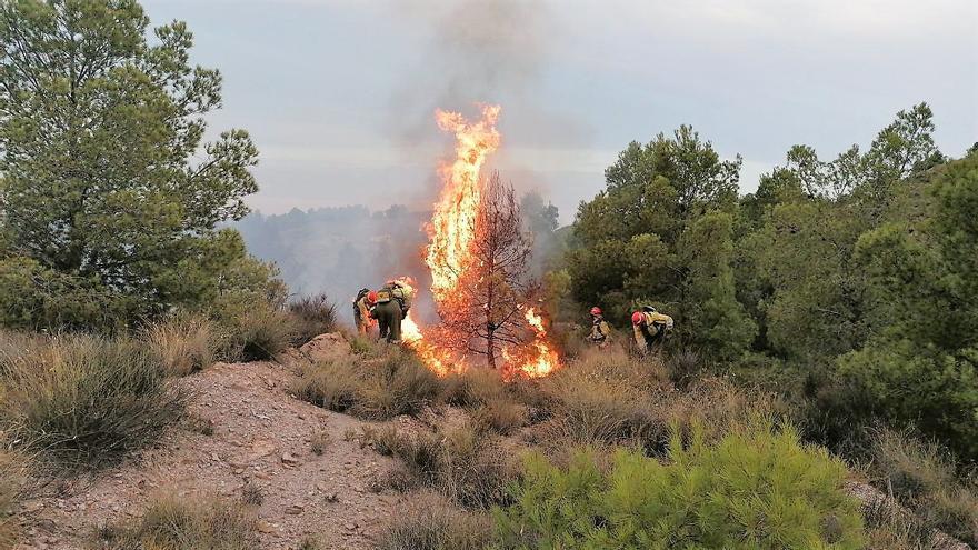 Intentan apagar un incendio forestal en la Sierra de la Peñarrubia de Lorca