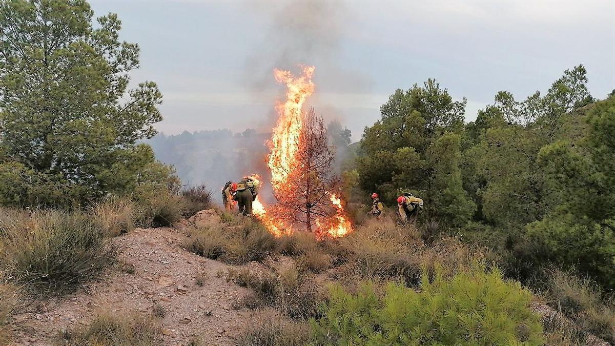Bomberos tratando de apagar el fuego.