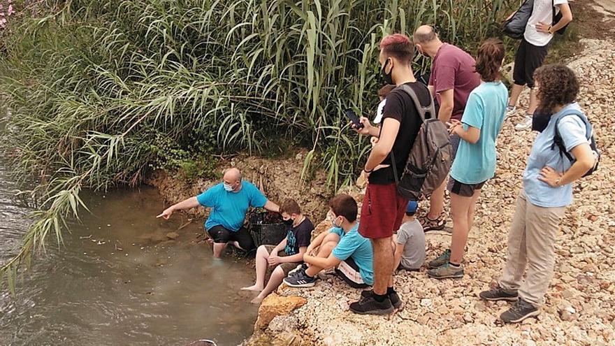 Regresa el proyecto Emys de Acción Ecologista