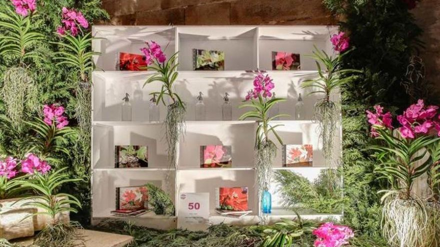 Temps de Flors inclourà el fossar de la Catedral de Girona i el pont del Dimoni