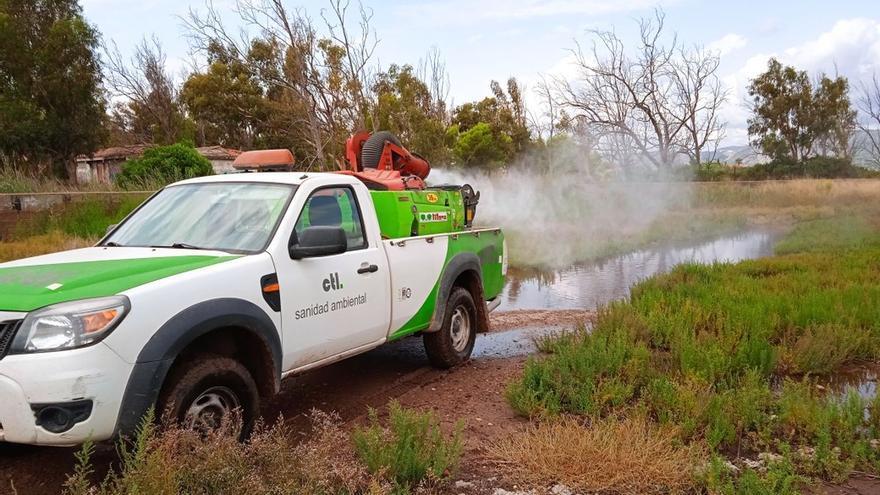 Benicàssim refuerza el control de mosquitos tras las pasadas lluvias