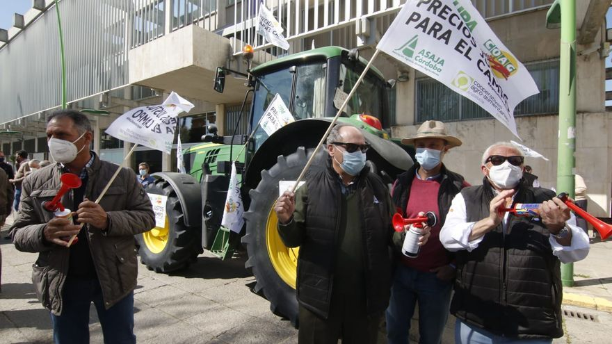 Agricultores cordobeses protestan contra el decreto de transición de la PAC