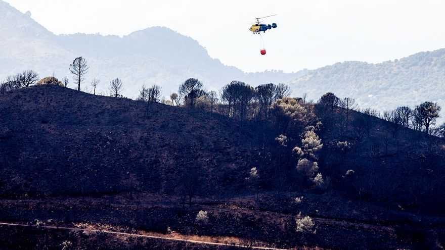 Vox reclama medidas para paliar los efectos del incendio de Sierra Bermeja
