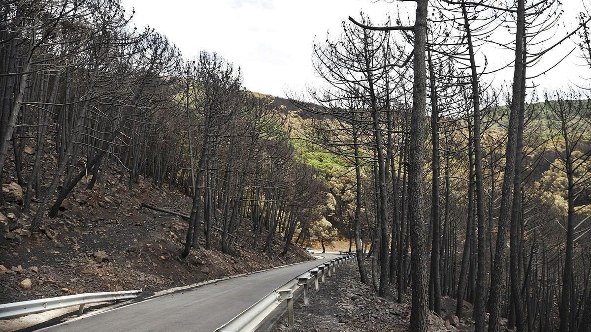 Reabren las carreteras afectadas tras el control del incendio