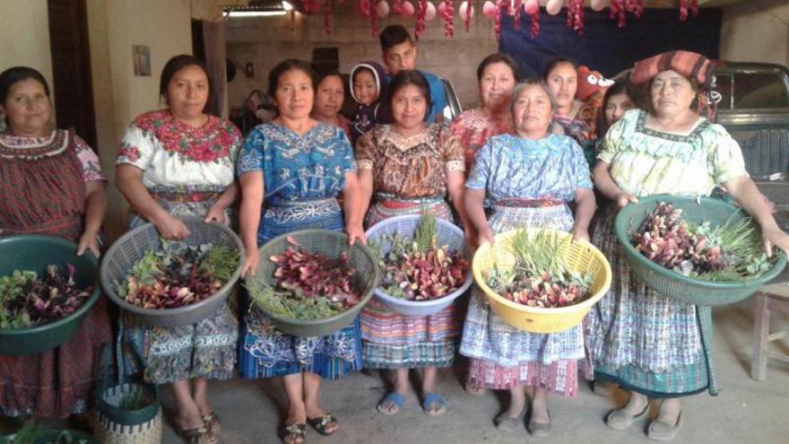 «En un any 12 famílies hauran ampliat la seua canastra bàsica d'aliments»
