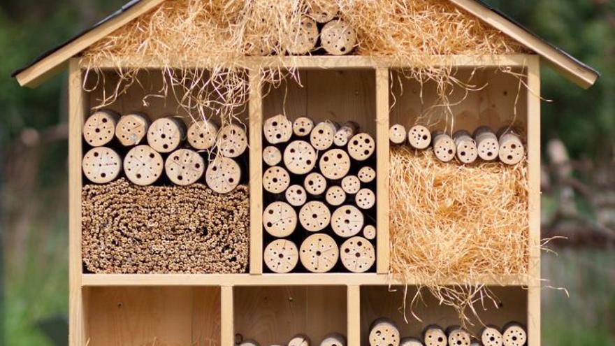 Los hoteles para insectos, en las Jornadas de Desarrollo Sostenible