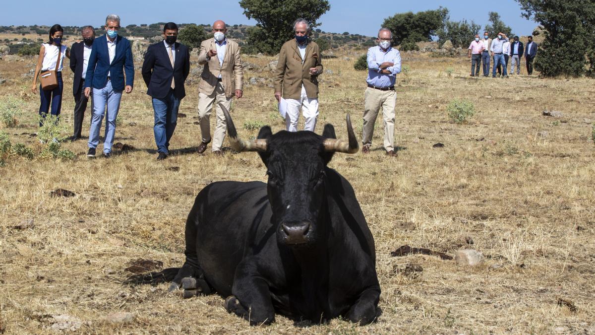 El consejero Carnero durante su visita ayer a Ávila.