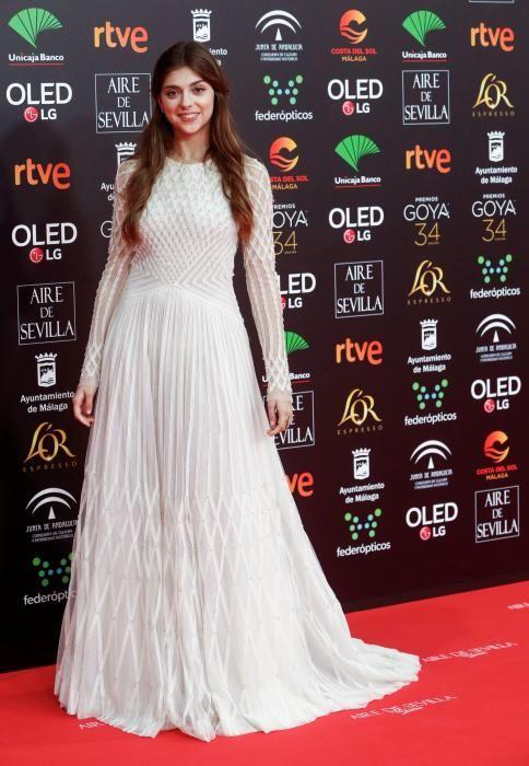 La catifa vermella dels premis Goya 2020
