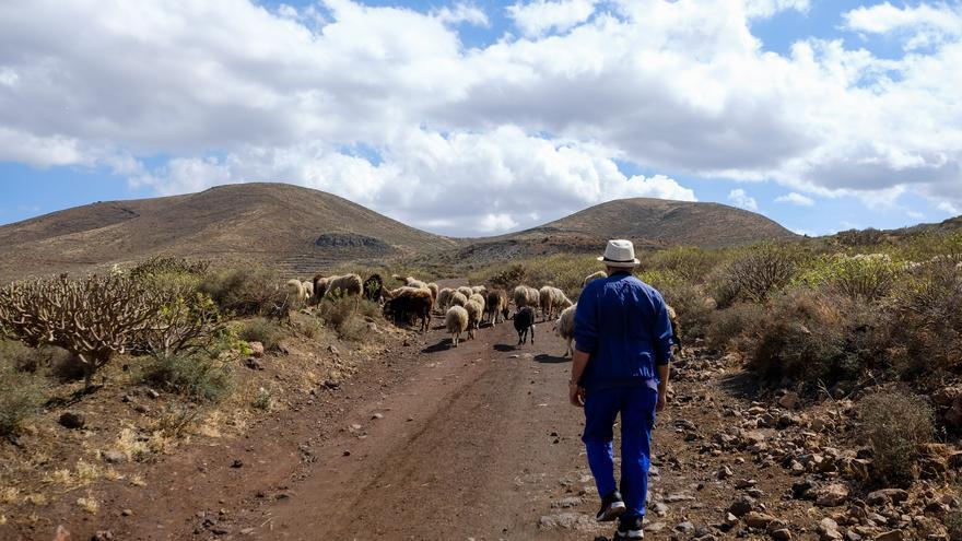"""Héctor Suárez: """"La supervivencia de la ganadería depende de una mejor coordinación entre las administraciones"""""""