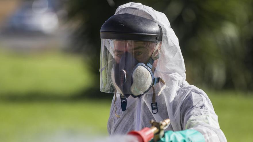 Cádiz registra cuatro casos de virus del Nilo y Sevilla tiene 24