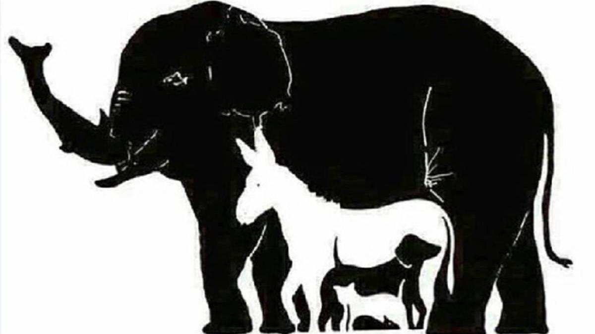 RETOS (V): Encuentra 13 animales