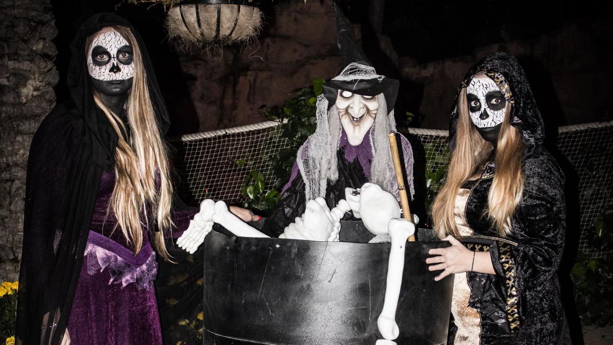 Mundomar celebra Halloween a partir del 9 octubre.