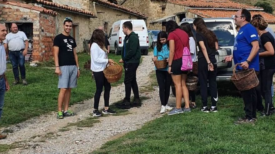'Fiebre' por las setas en el interior de Castellón con un aluvión de buscadores