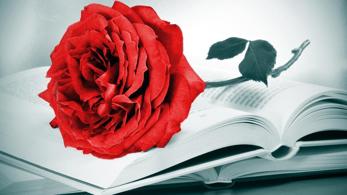 Novedades del Día del Libro.