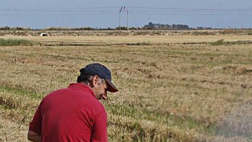 Los agricultores piden frenar la caza hasta aclarar la quema ilegal