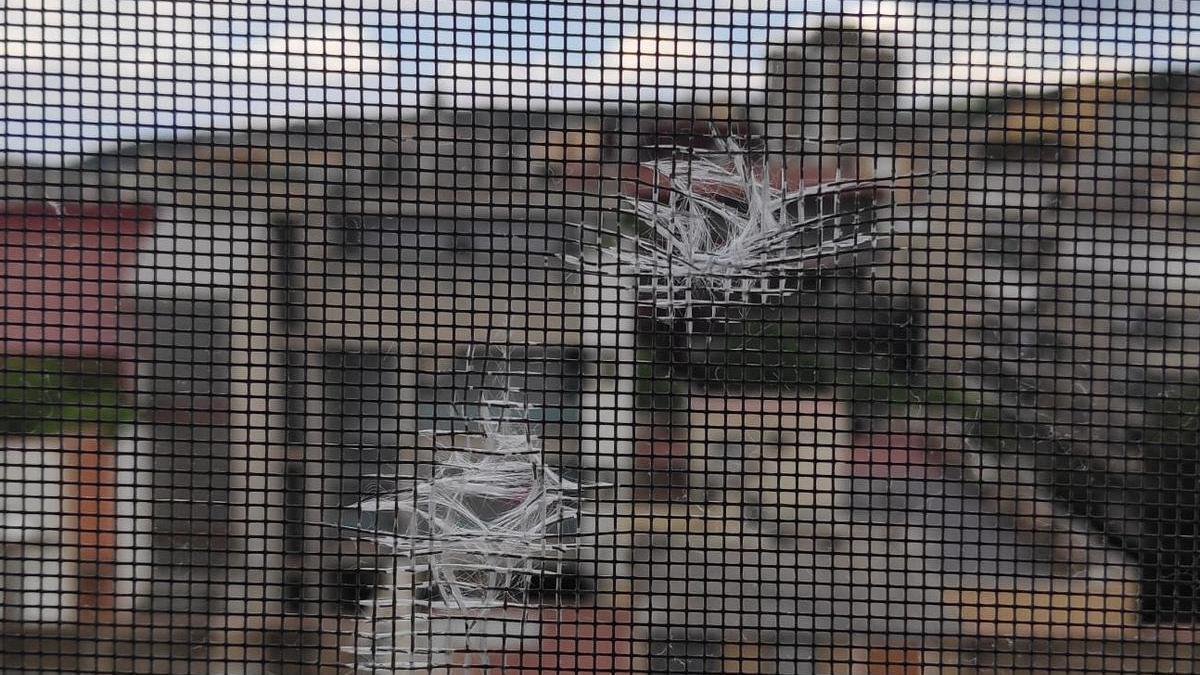 Els forats que han aparegut en una finestra del centre