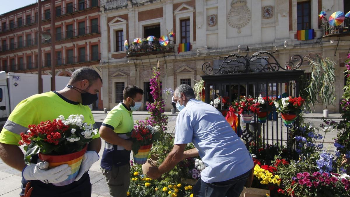 La Corredera, decorada con macetas con los colores de las banderas trans y arcoirís.