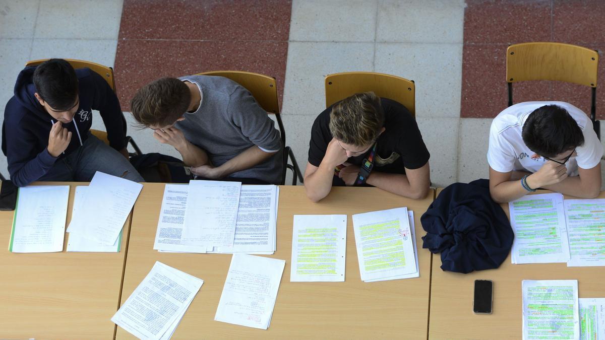 Estudiantes repasando.