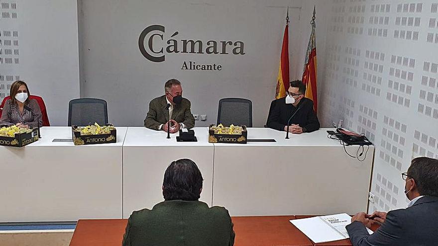 Novelda y Monforte encargarán un estudio sobre el puerto seco a la Cámara de Alicante