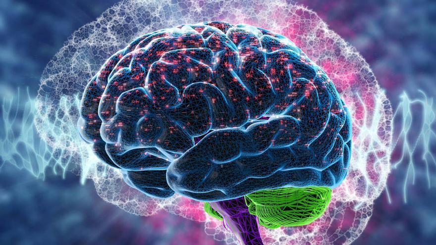 Dia Nacional de l'Epilèpsia: la pandèmia incrementa els atacs epilèptics