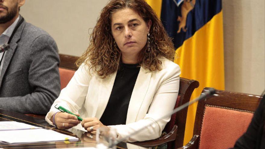 Canarias presenta el borrador catálogo de servicios y prestaciones a entidades e instituciones