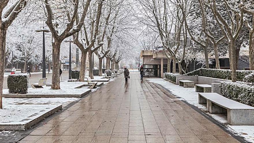 "Cencellada en Zamora | Un paseo por los ""bosques helados"" de Zamora"