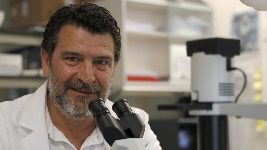 Los microbiólogos resaltan la necesidad de armonizar salud humana, animal y ambiental
