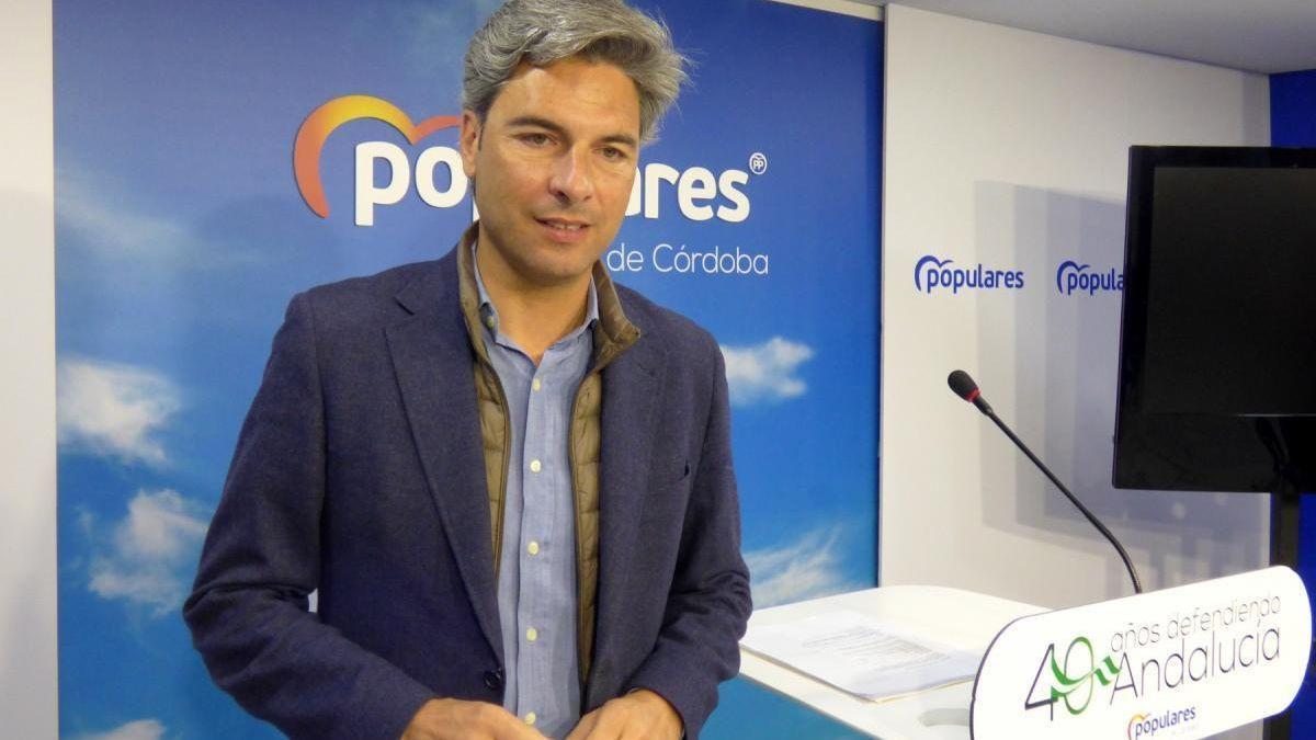 El diputado del PP por Córdoba Andrés Lorite.