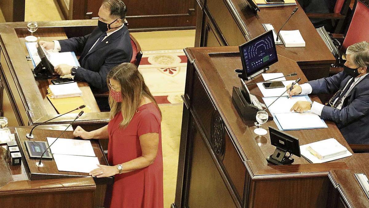 La consellera Gómez ayer durante su comparecencia en el Parlament.
