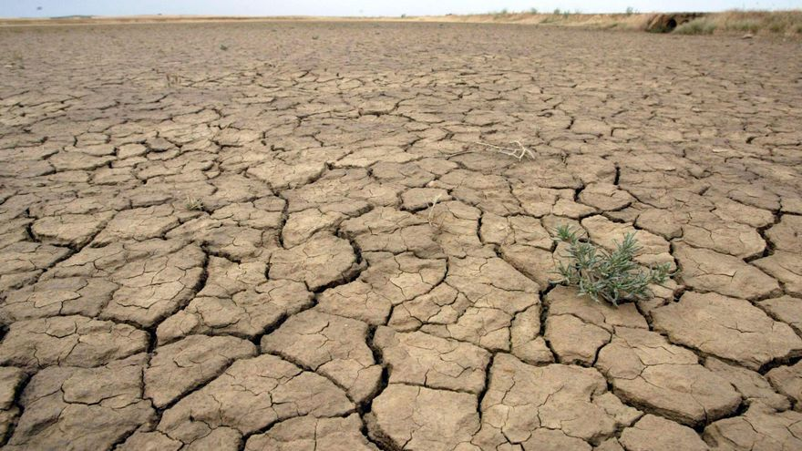 La masa de agua de Tierra del Vino, entre las que registran niveles más bajos