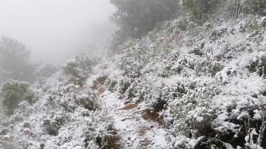 El Desert de Les Palmes de Castellón se cubre de nieve durante la Borrasca Filomena