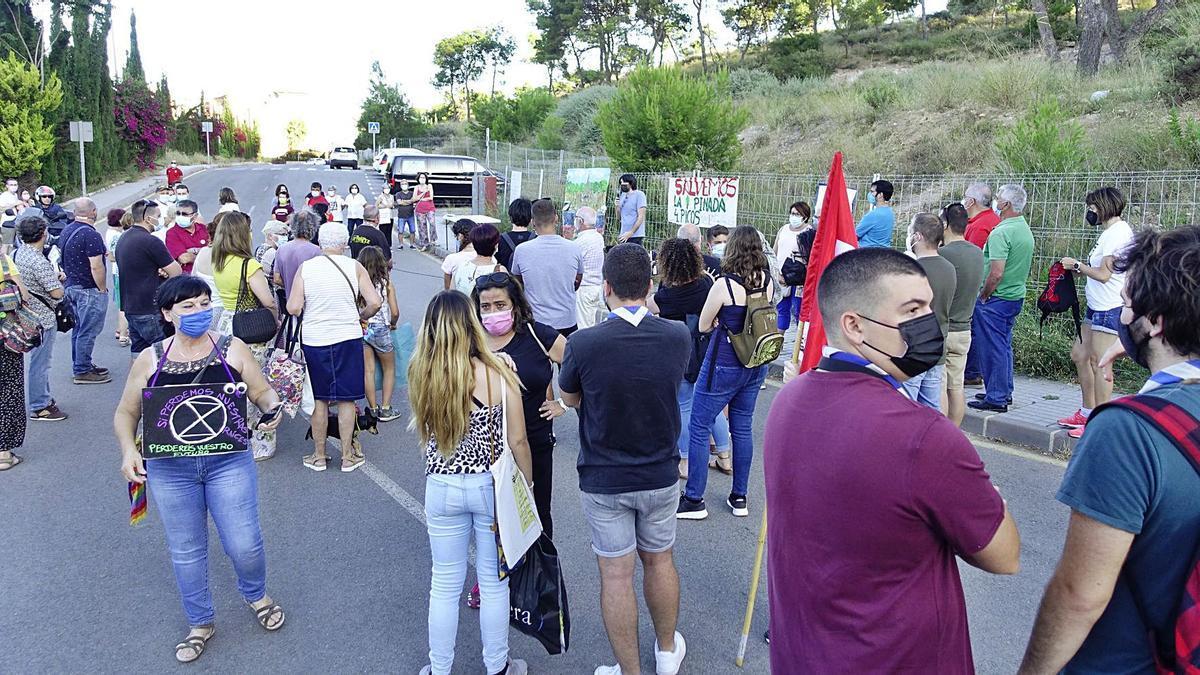 Manifestación en la pinada de Cuatro Picos.