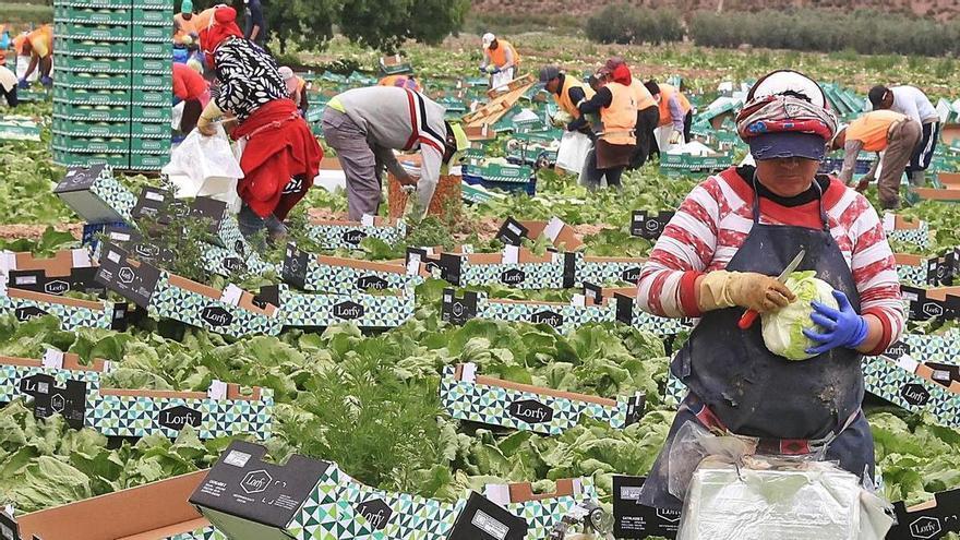 La pandemia no frena unas exportaciones en alimentación por más de 7.000 millones