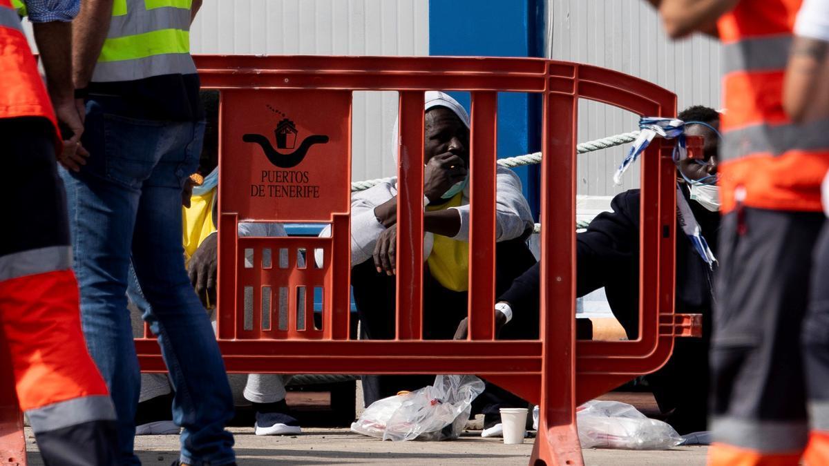 Llegada al Puerto de Los Cristianos una patera con 13 ocupantes.