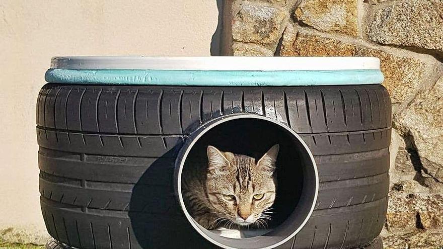 Casetas para gatos callejeros con neumáticos usados