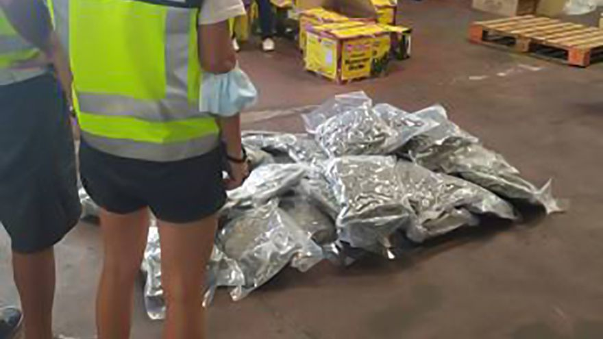 Cae en Alicante y Holanda una red que traficaba con armas y marihuana oculta en comida india