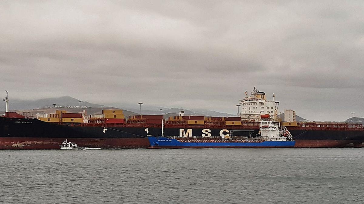 Un MSC en el Santa Catalina   LP/DLP