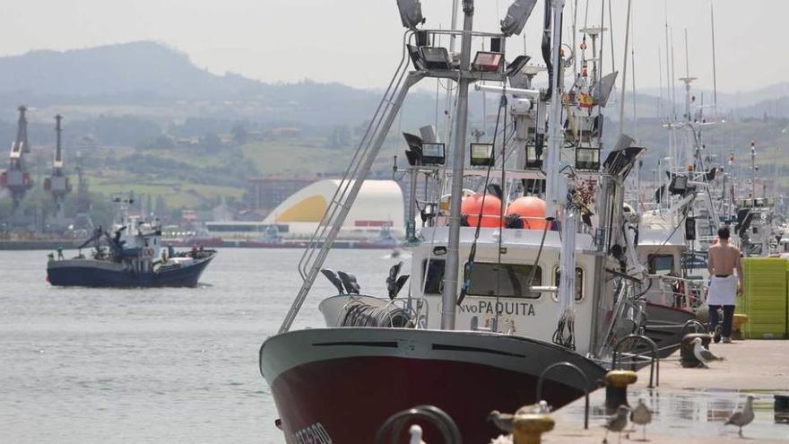 Ayalgues submarines del Cantábricu