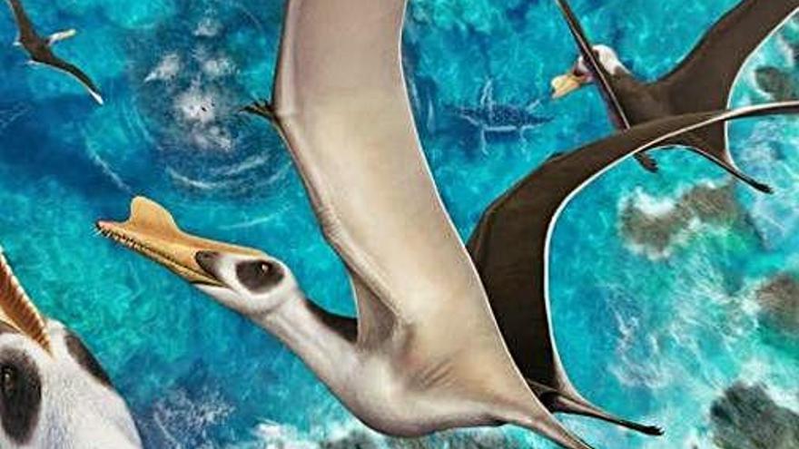 Descriuen una nova espècie de rèptil volador que vivia a Terol