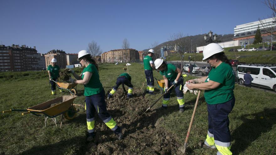 Hoy finaliza el plazo para optar a cien puestos del nuevo plan de empleo municipal