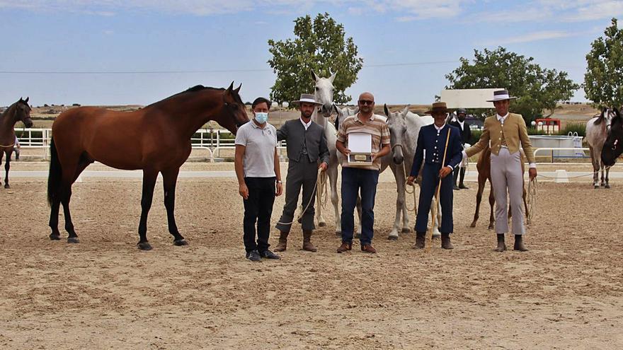 Brillante exhibición de PRE en Equus Duri