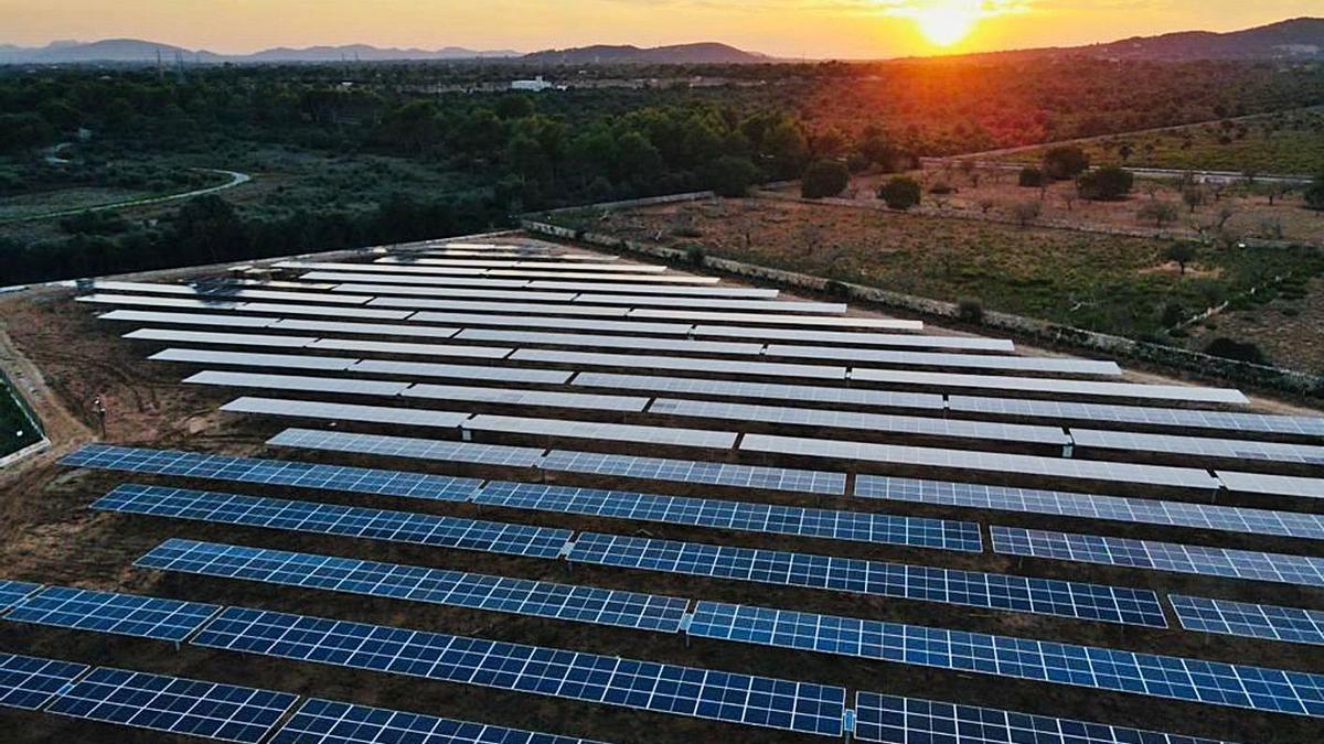 Parque fotovoltaico ubicado en Sant Llorenç.