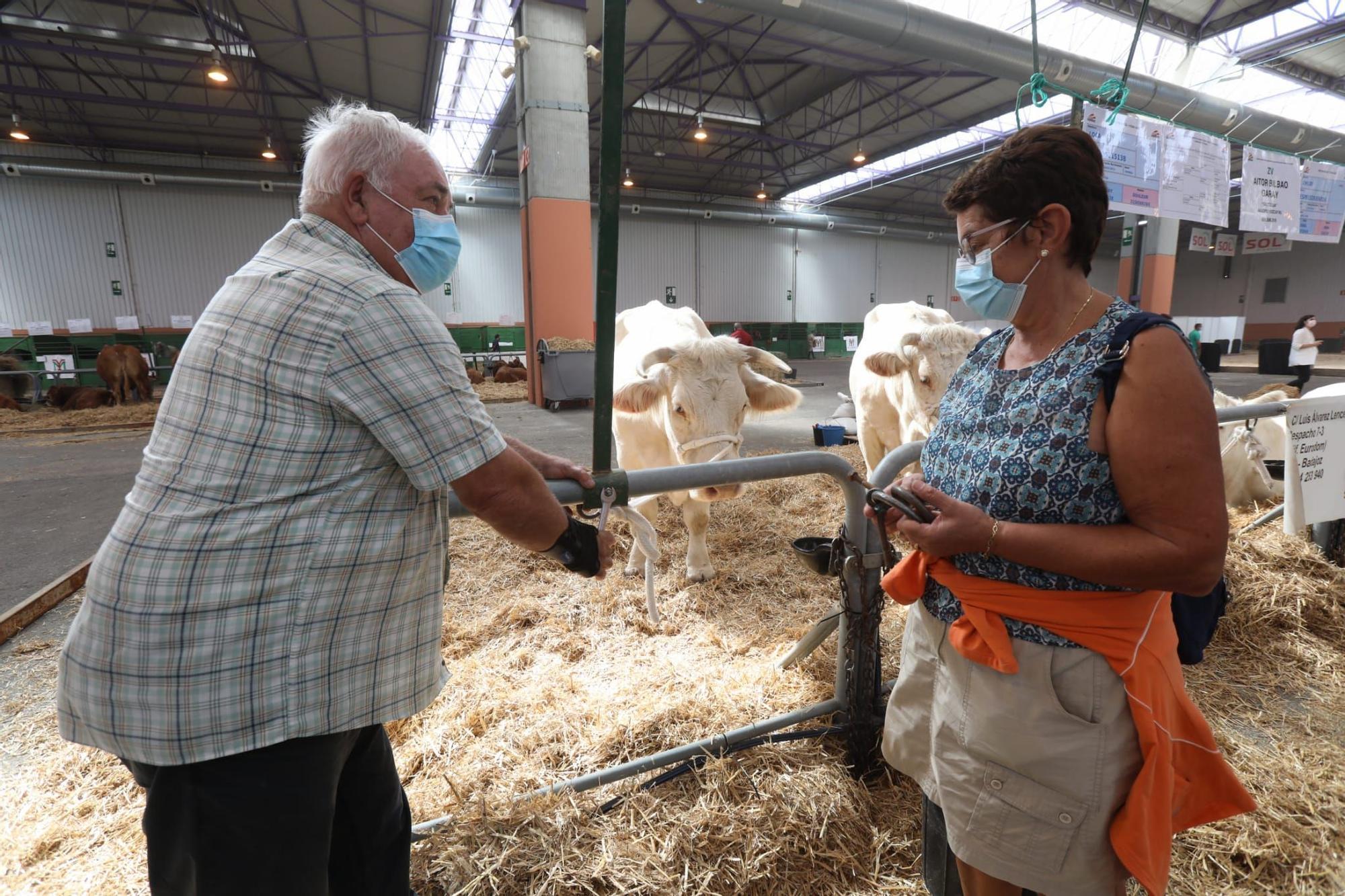 FOTOGALERÍA | La industria ganadera devuelve la alegría a la Feria de Zaragoza